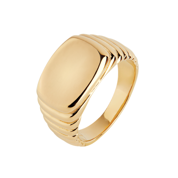 Shore Ring
